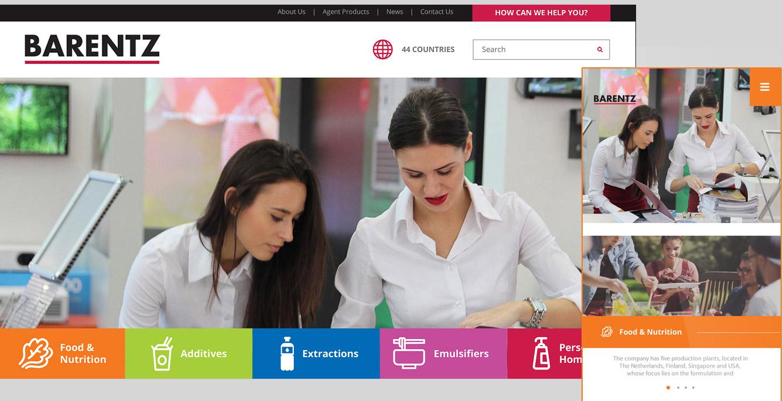 Corporate Website Design Company